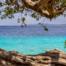 Bonaire Full Day Island Tour