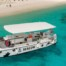 Snorkel Tour Bonaire Double Dip Seacow