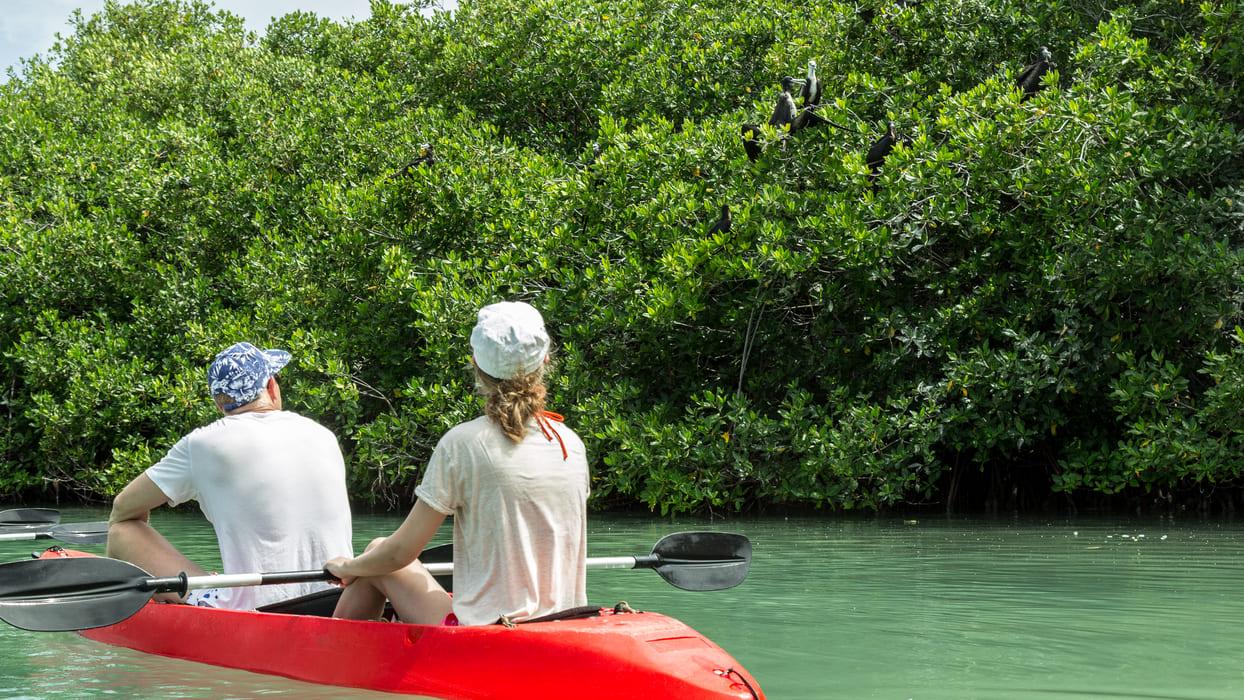 Bonaire Mangrove Clear Bottom Kayak