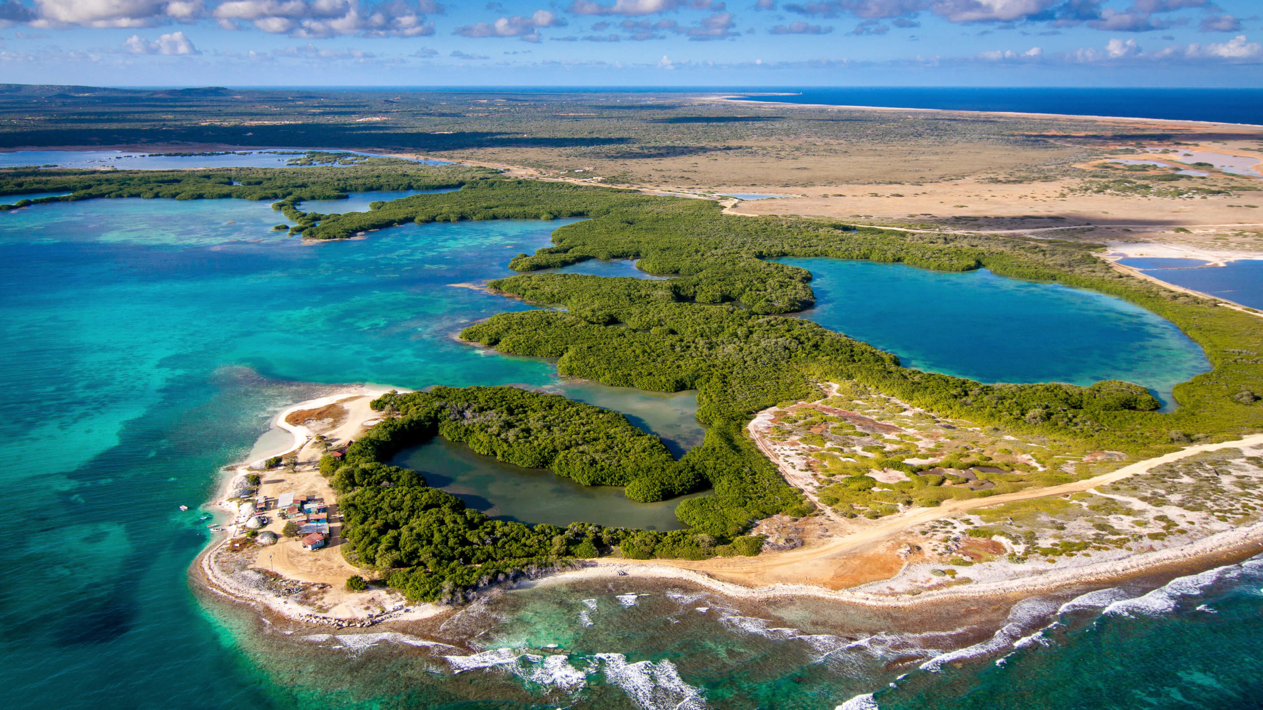 Bonaire Mangroves, Flamingos & Sand
