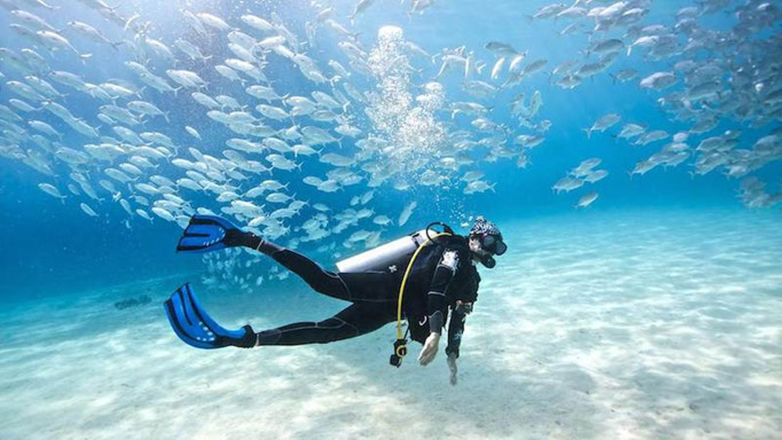 Bonaire Semi private dive